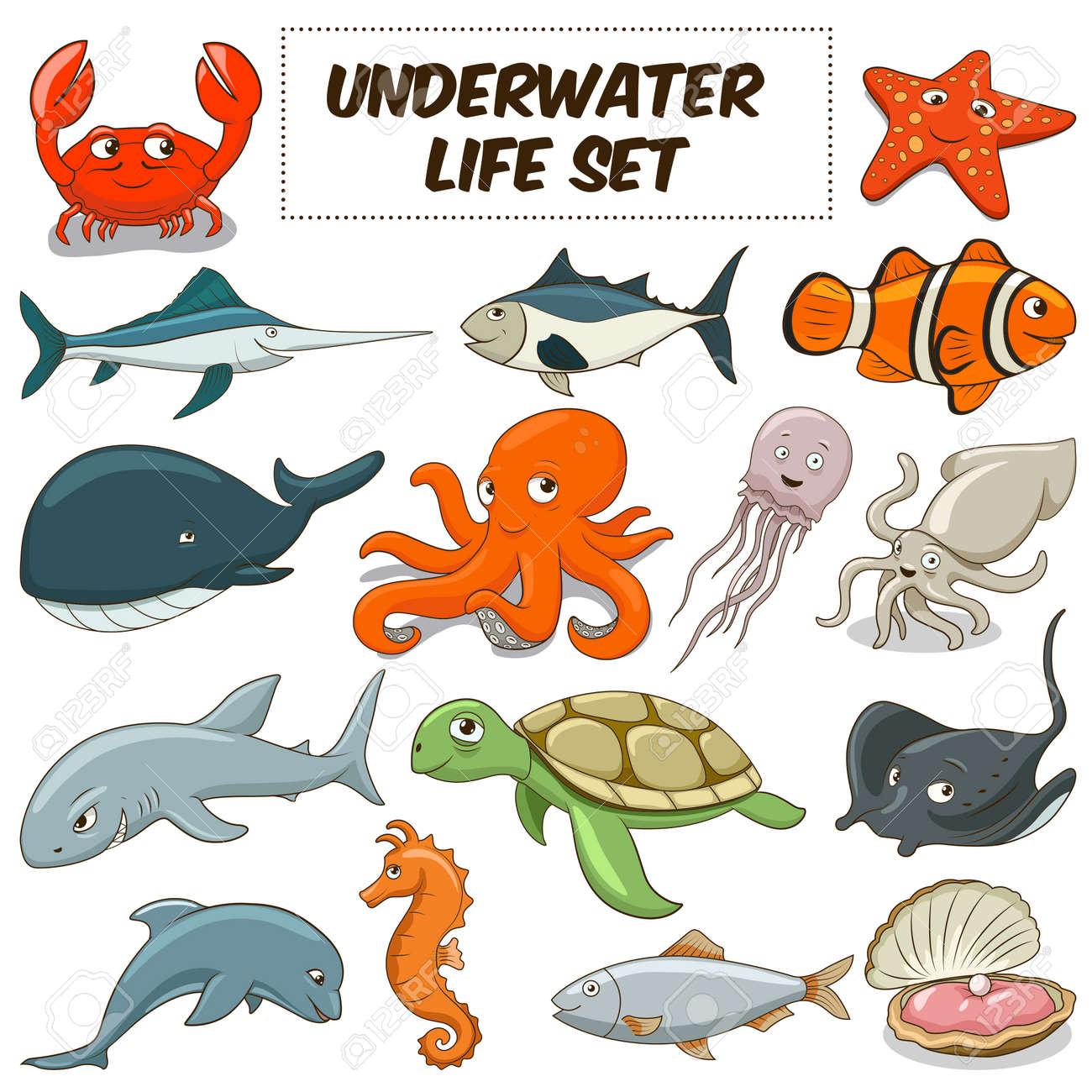 De Dibujos Animados Divertidos Animales De La Vida Bajo El Agua