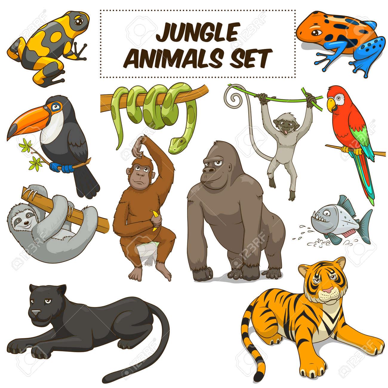 Animales De La Historieta Divertida Selva Conjunto De Colores ...