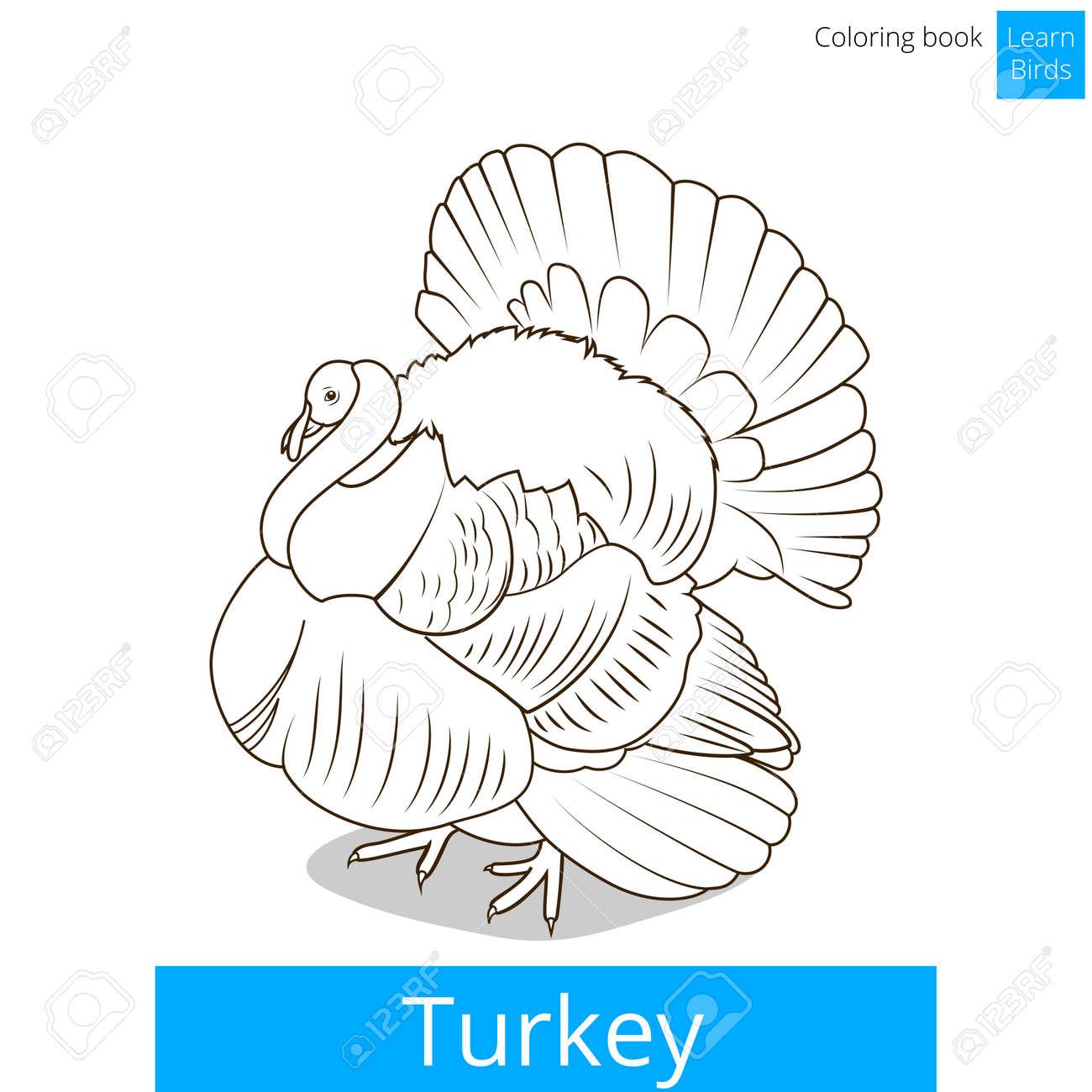 Ungewöhnlich Malbuch Türkei Galerie - Malvorlagen Von Tieren - ngadi ...