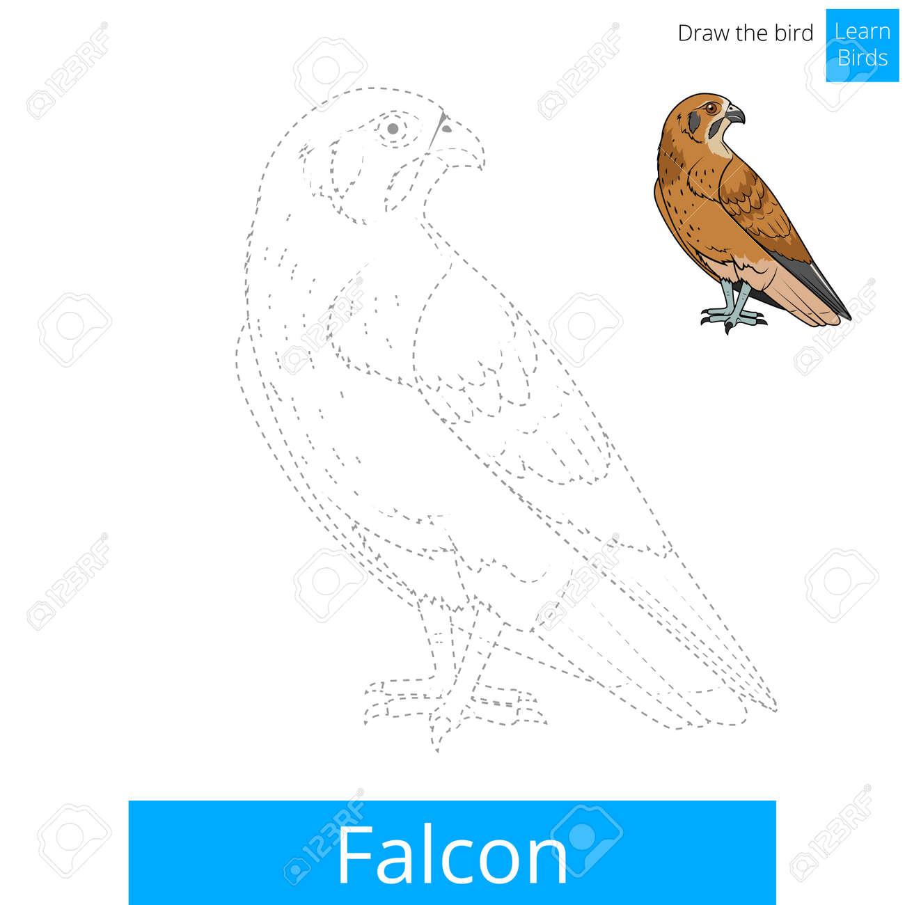 Fantástico Aves Enojado Modelo Que Hace Punto Bandera - Manta de ...