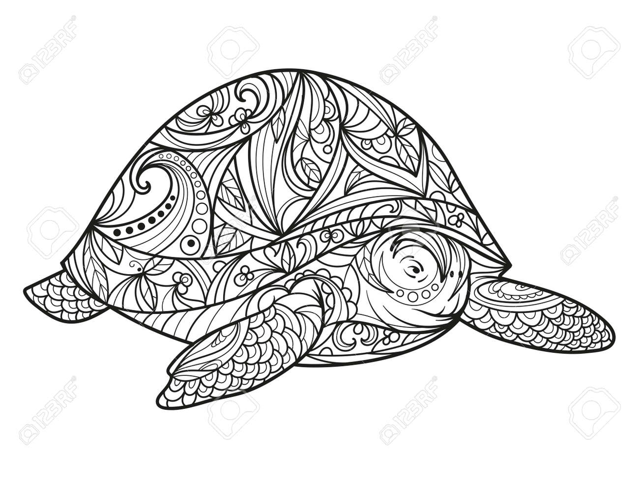 Turtle Coloring Book For Adults Illustration Anti Stress Adult Style