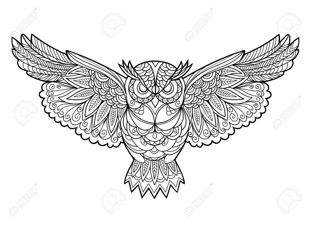 Owl bird coloring book for adults vector illustration. Anti-stress coloring for adult. Zentangle style. Black and white lines. Lace pattern - 53079859