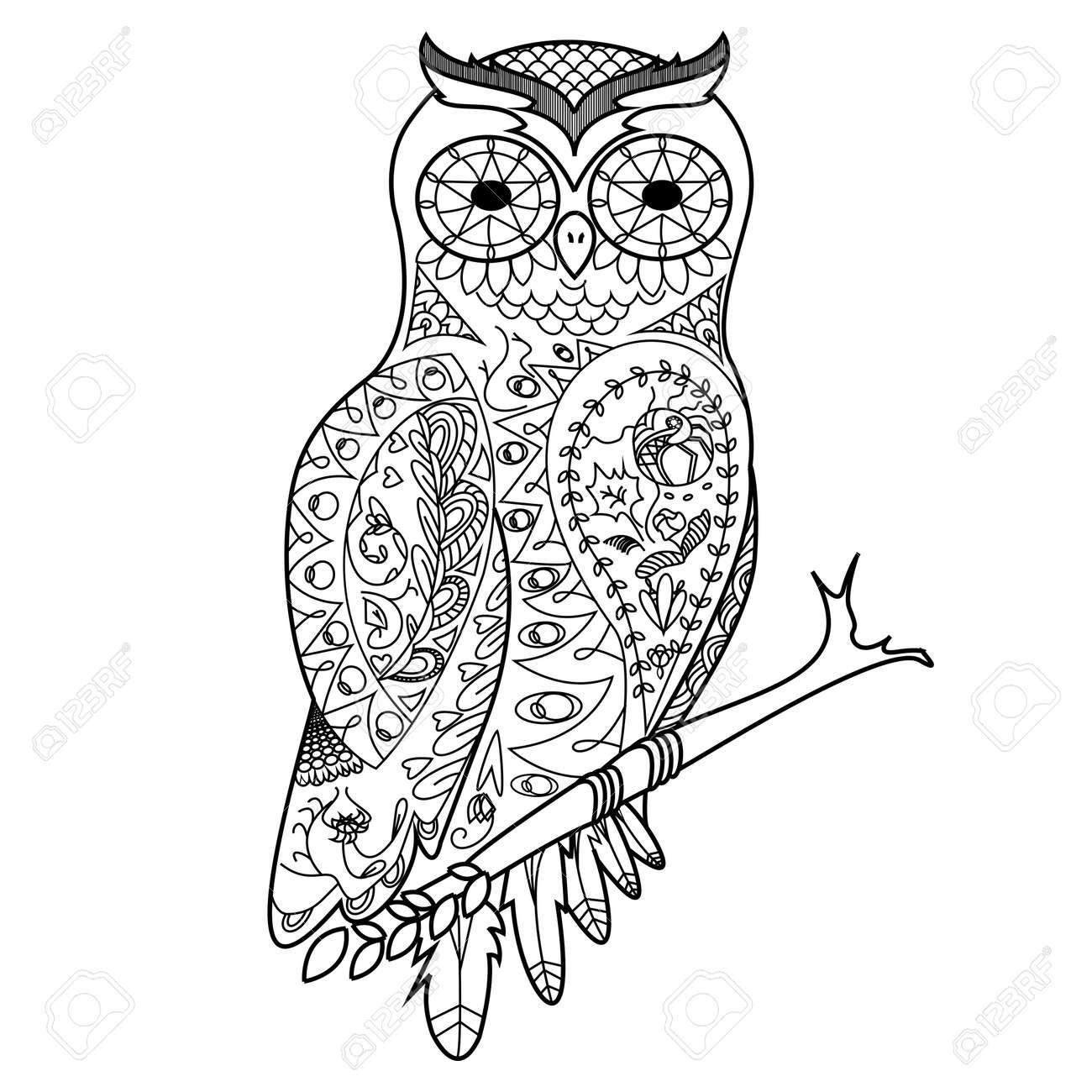 Búho Libro Para Colorear De Aves Para Adultos Ilustración ...