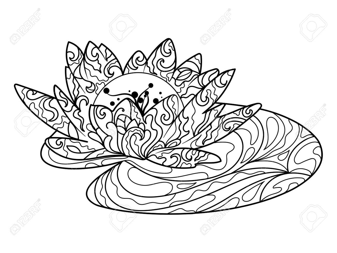 Lotus Water Lily Flower Coloring Book For Adults Vector Illustration ...