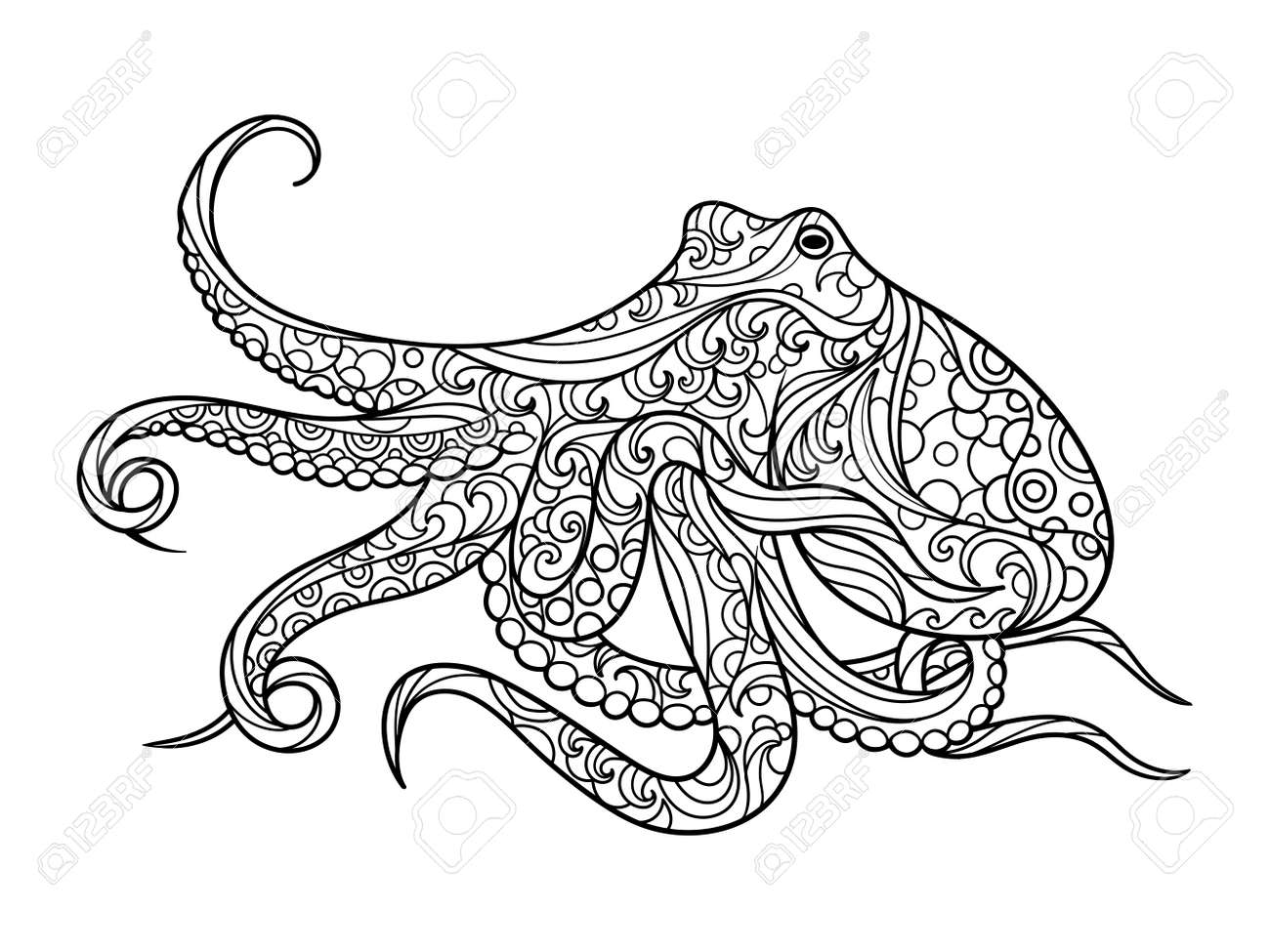980+ Coloring Book Ocean Animal Picture HD