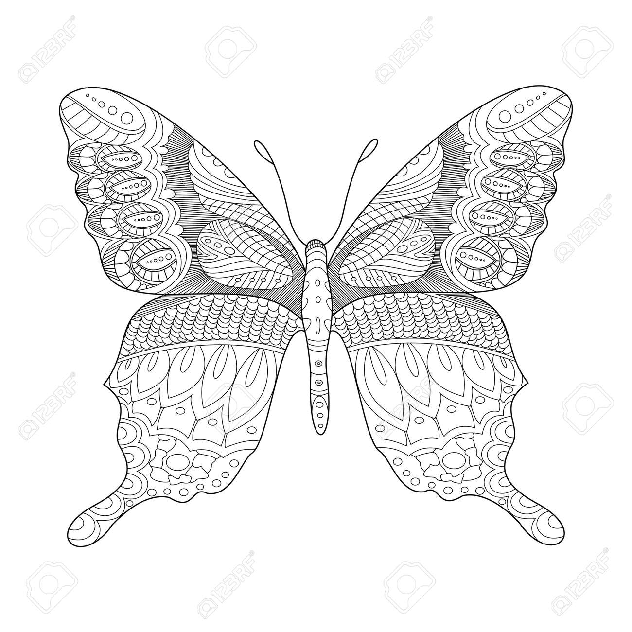 Butterfly Coloring Book For Adults Illustration. Anti-stress ...