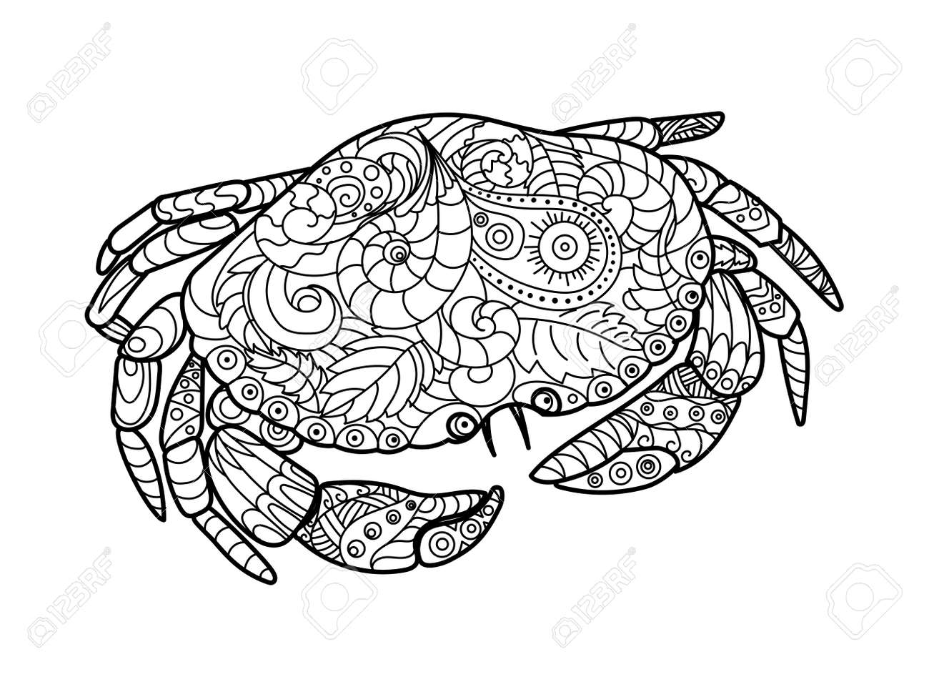Crab Sea Animal Coloring Book For Adults Vector Illustration Anti Stress Adult