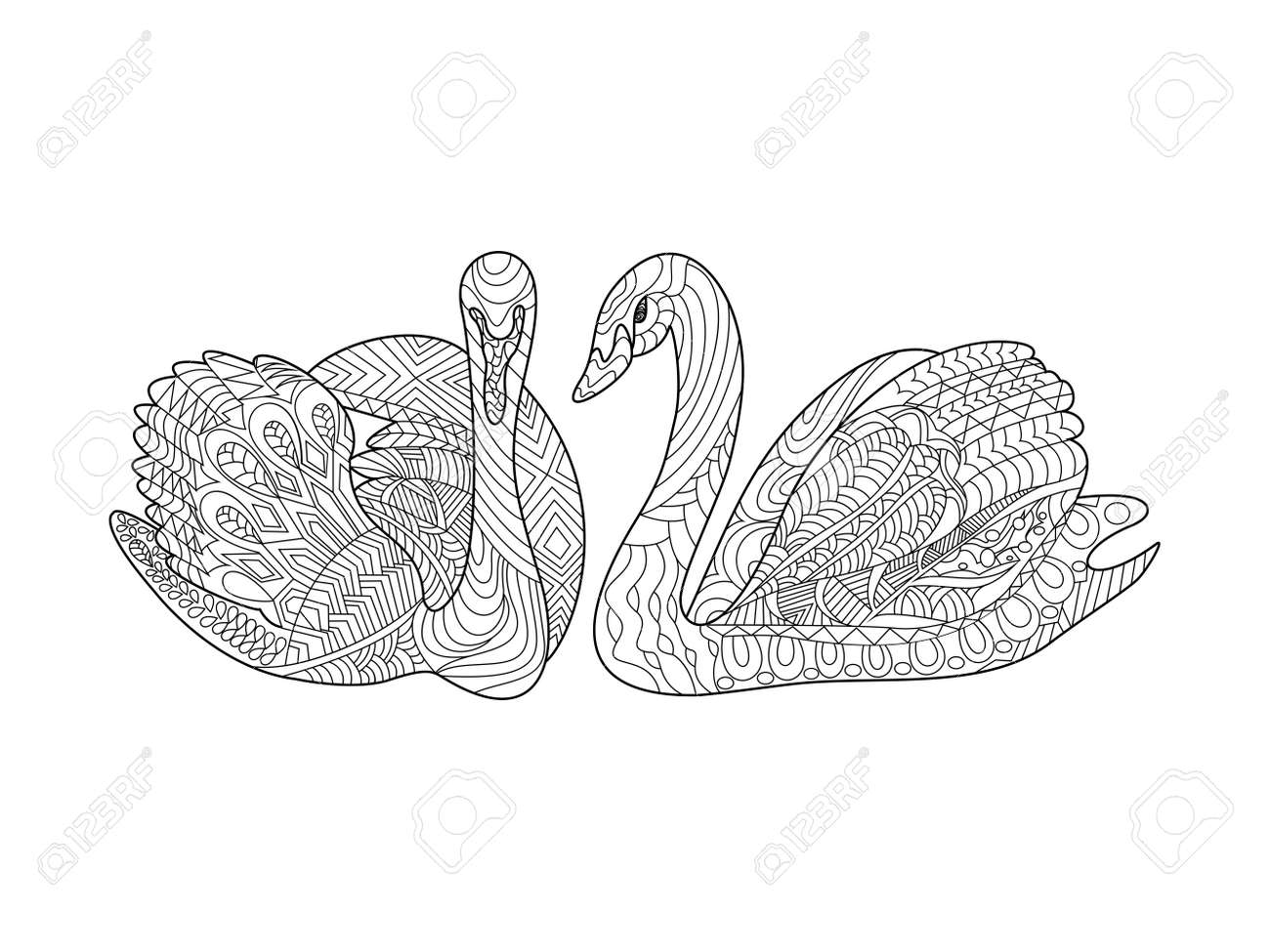 Swans Birds Coloring Book For Adults Vector Illustration. Anti ...