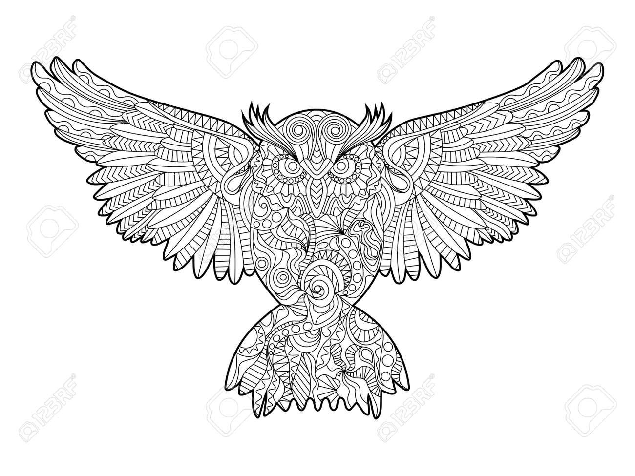 Búho Libro Para Colorear De Aves Para La Ilustración Vectorial ...