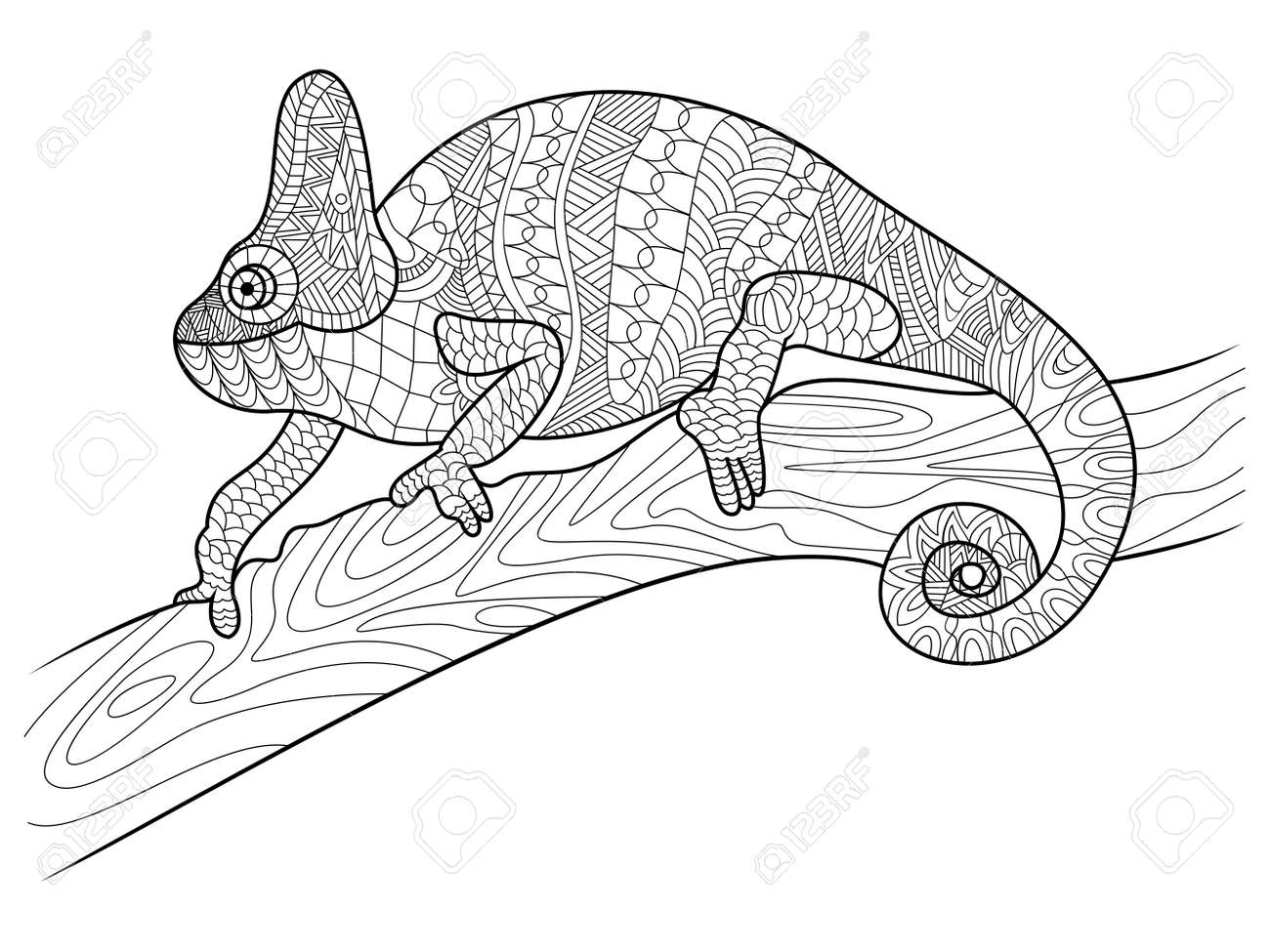 Chameleon Animal Coloring Book For Adults Vector Illustration Black And White Lines Lace Pattern