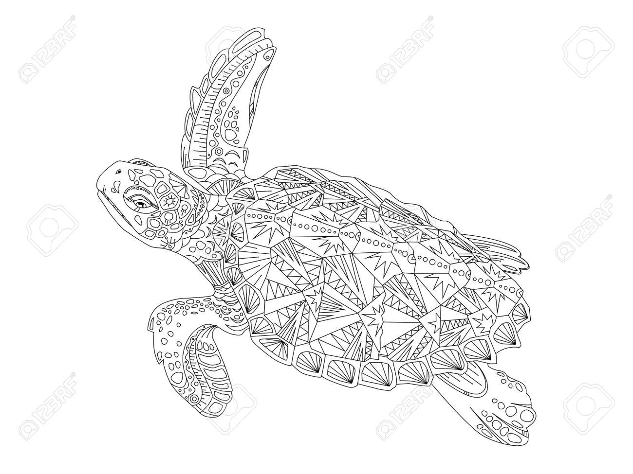 Turtle coloring book vector illustration. Anti-stress coloring..