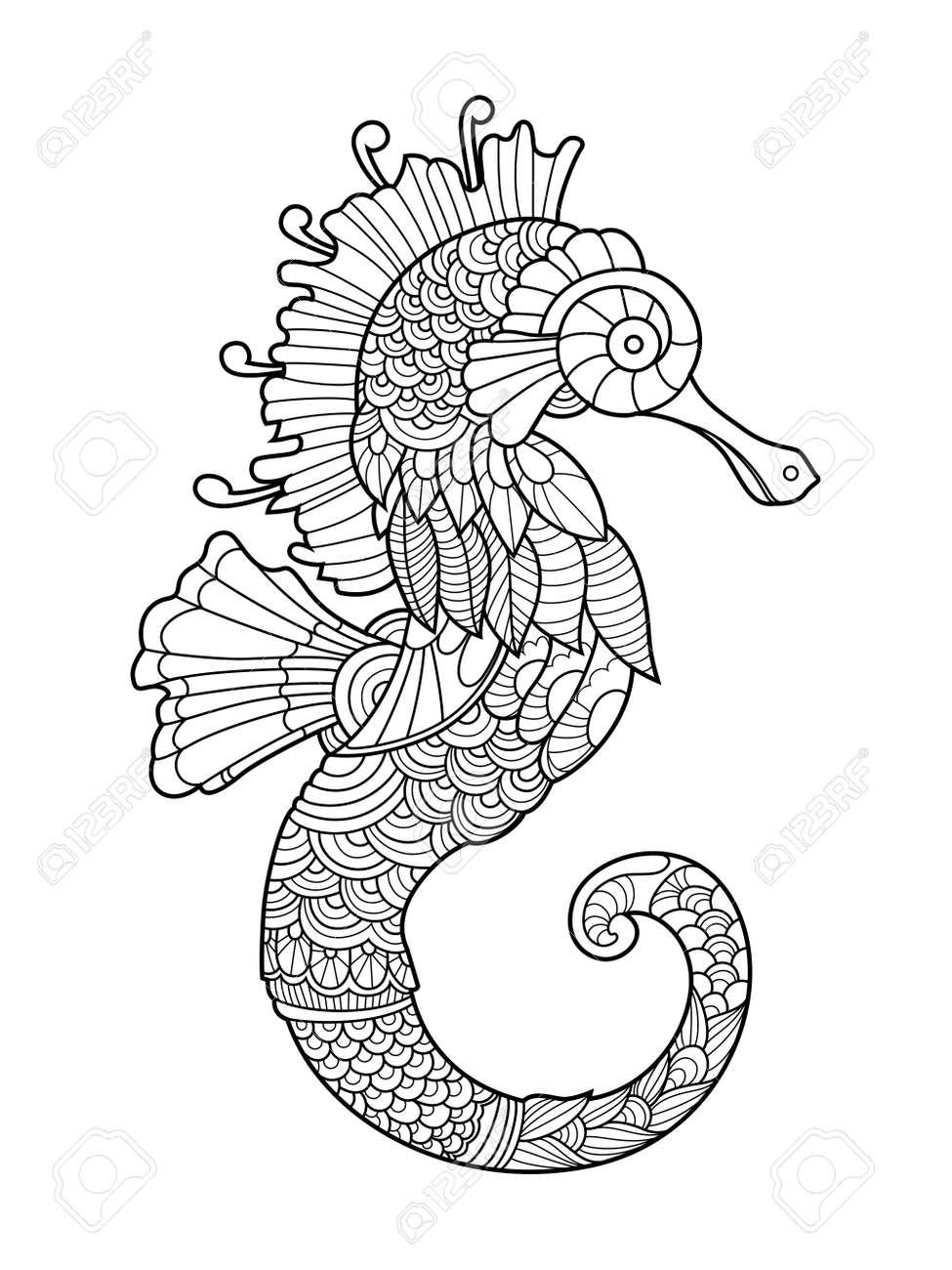 Caballito De Mar Para Colorear Para Los Adultos Ilustración ...