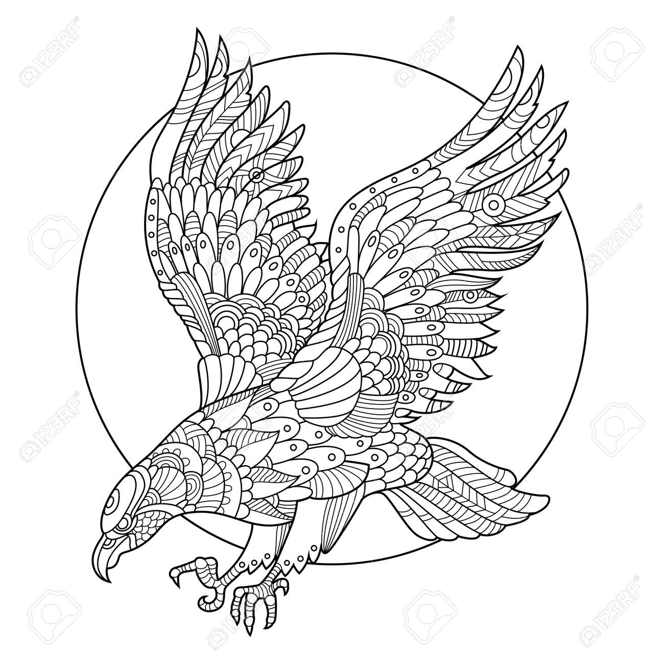 - Eagle Bird Coloring Book For Adults Illustration. Anti-stress