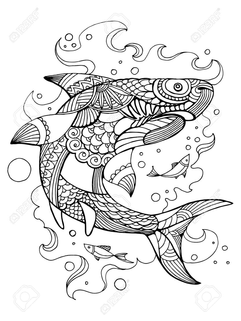Shark Coloring Book For Adults Vector Illustration. Anti-stress ...