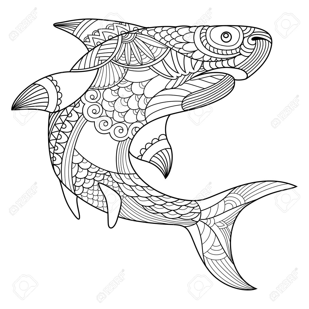 Shark Coloring Book For Adults Vector Illustration Anti Stress