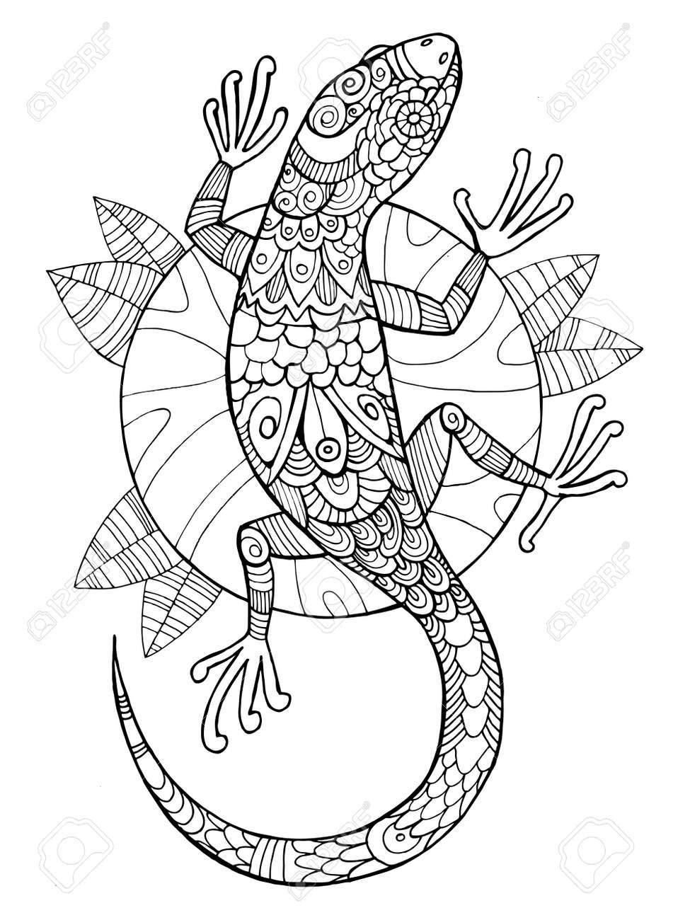 lizard coloring book for adults vector illustration. Anti-stress..