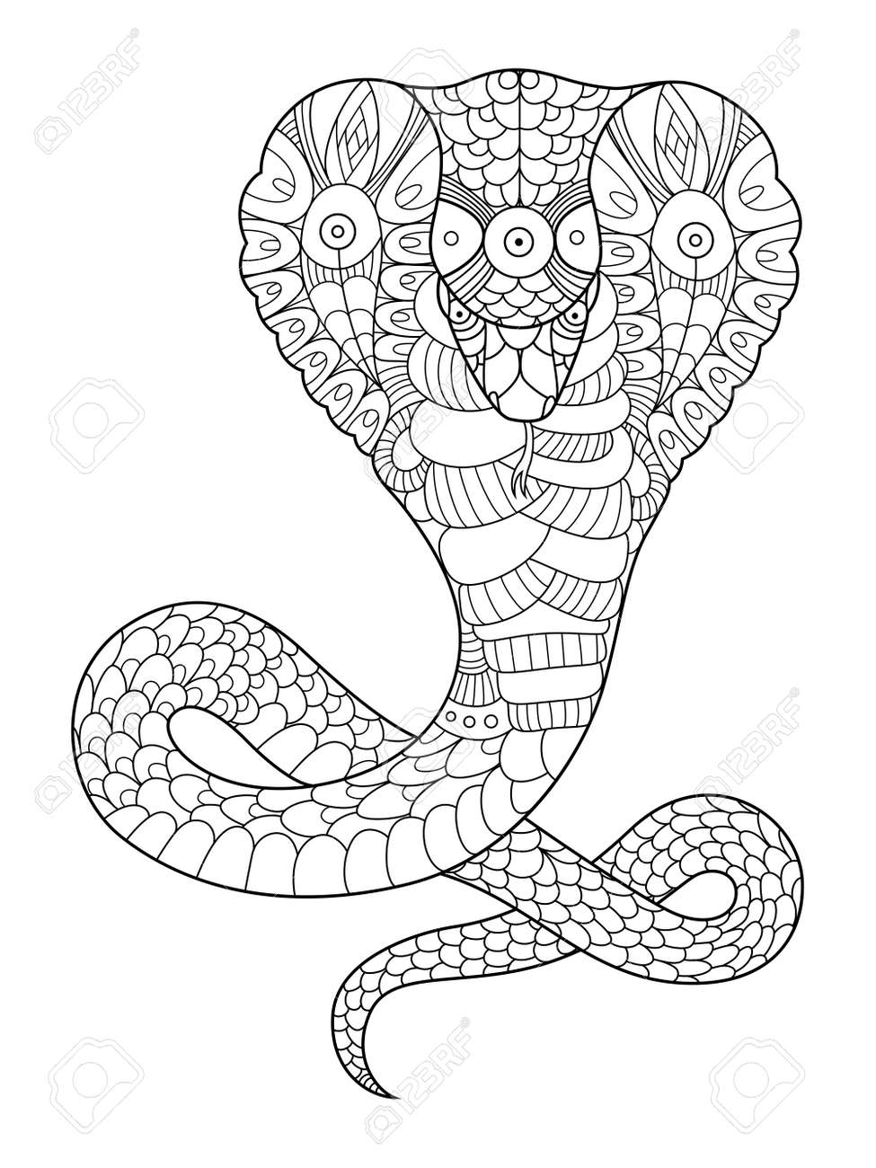 Cobra snake coloring book for adults vector illustration. Anti-stress coloring for adult. Tattoo stencil. Black and white lines. Lace pattern - 68895634