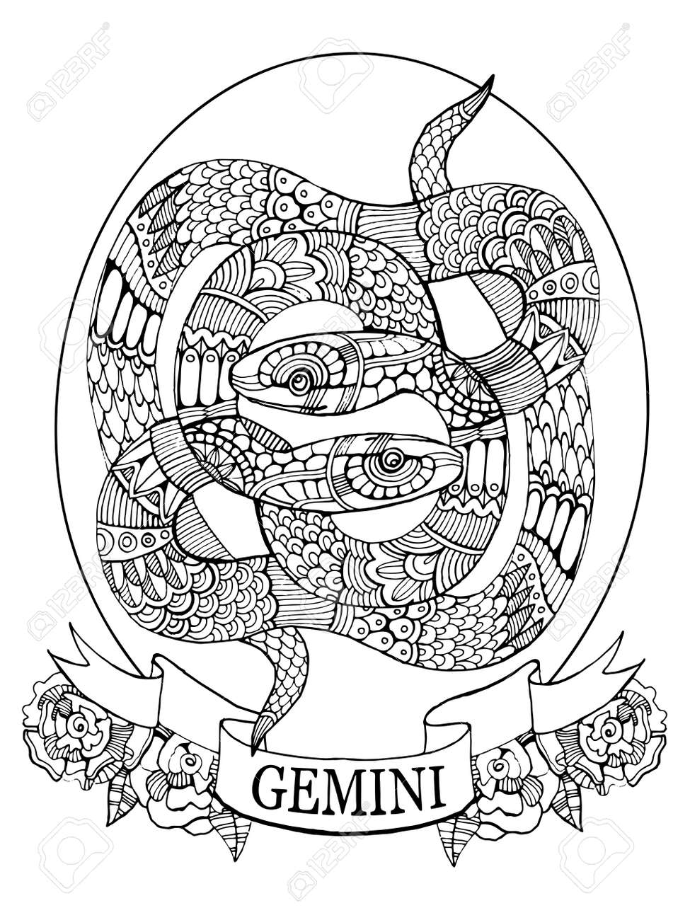 Gemini Zodiac Sign Coloring Book For Adults Vector Illustration