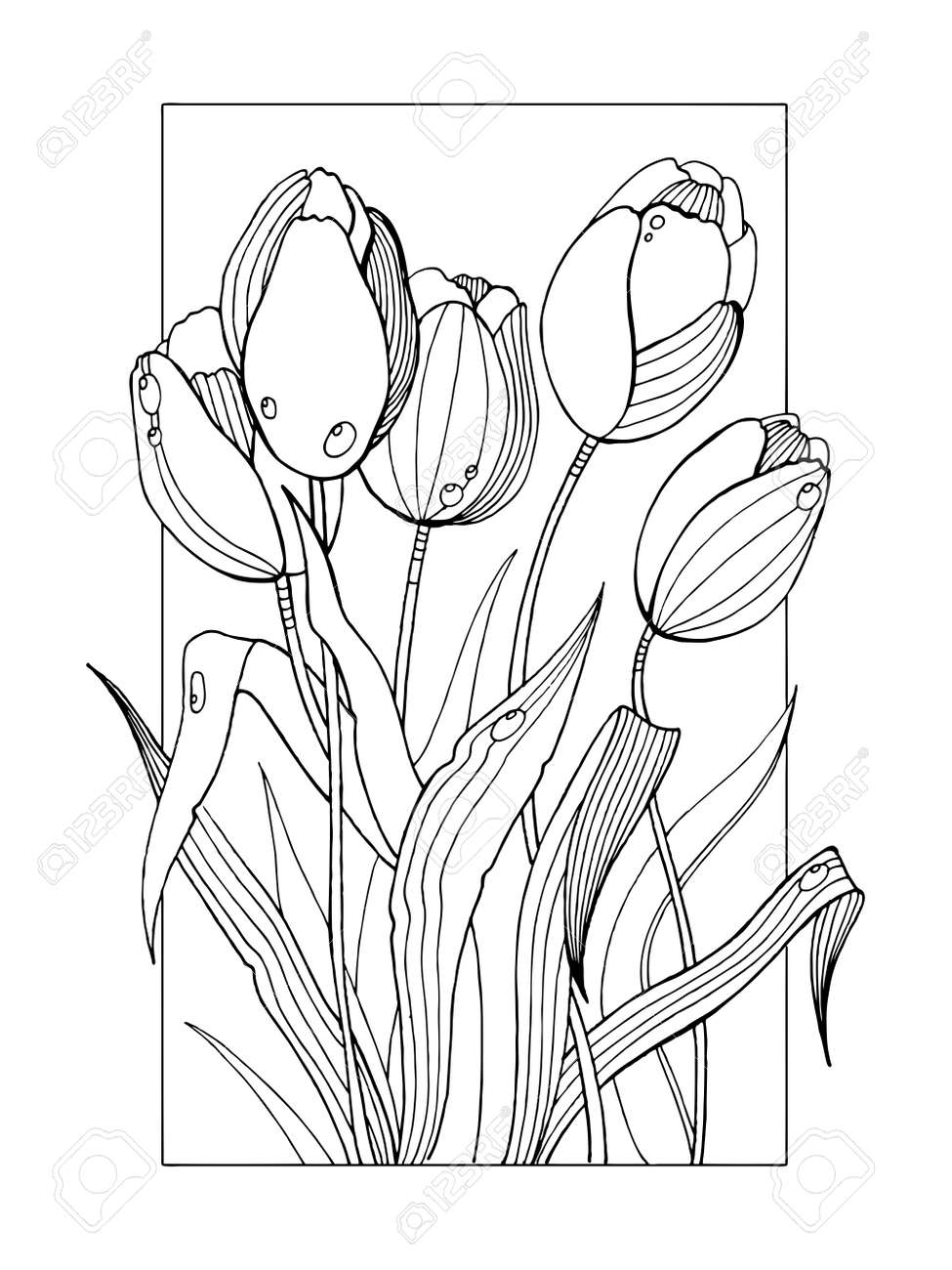 Tulip Flowers Coloring Book Vector Illustration Stock