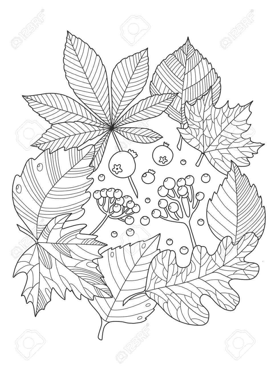Hojas De Los árboles De Follaje Para Colorear La Ilustración De Libros De Vectores Antiestrés Colorear Libro Para Adultos Plantilla Del Tatuaje