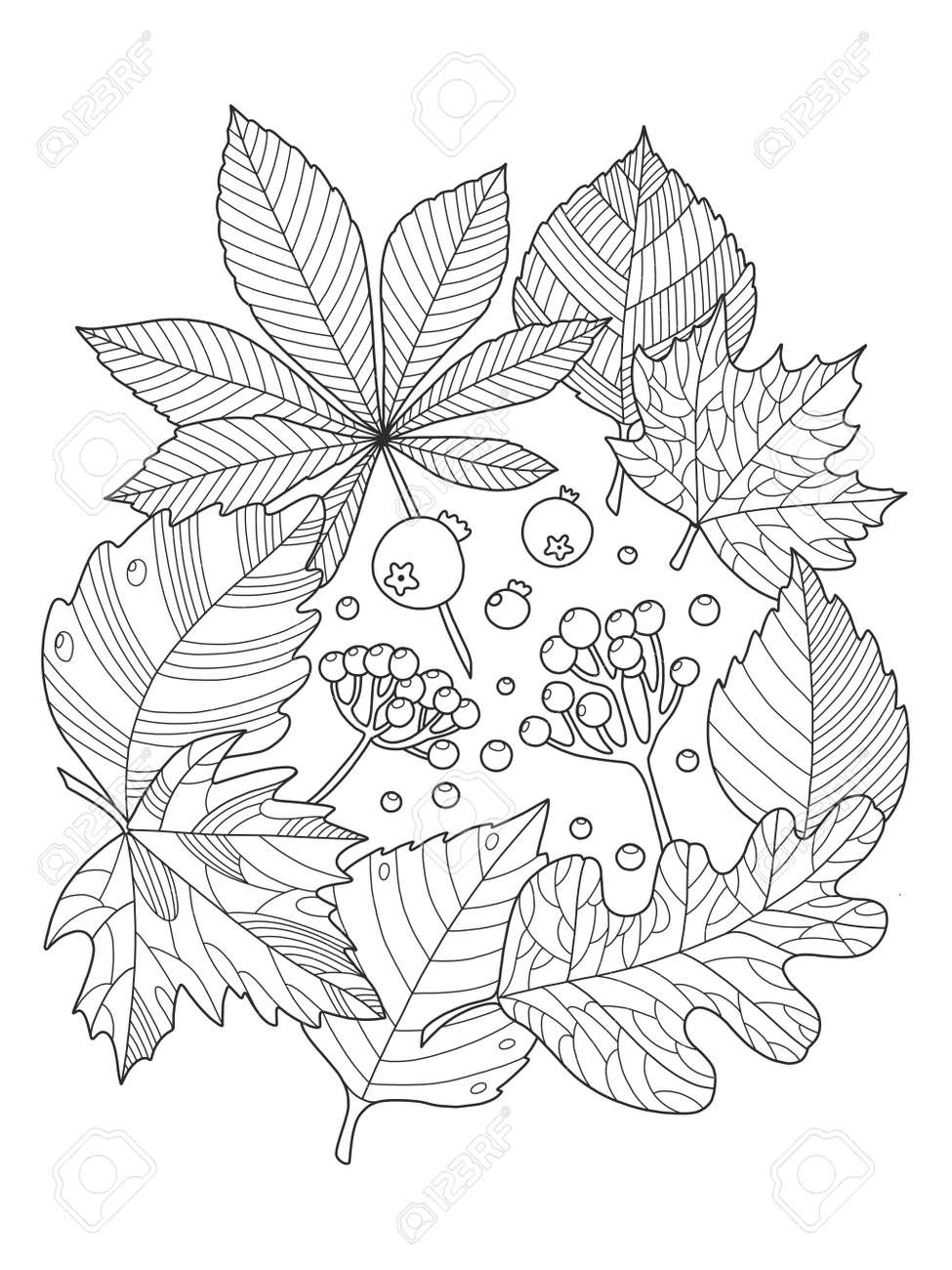 Tree Leaves Foliage Coloring Book Vector Illustration. Anti-stress ...