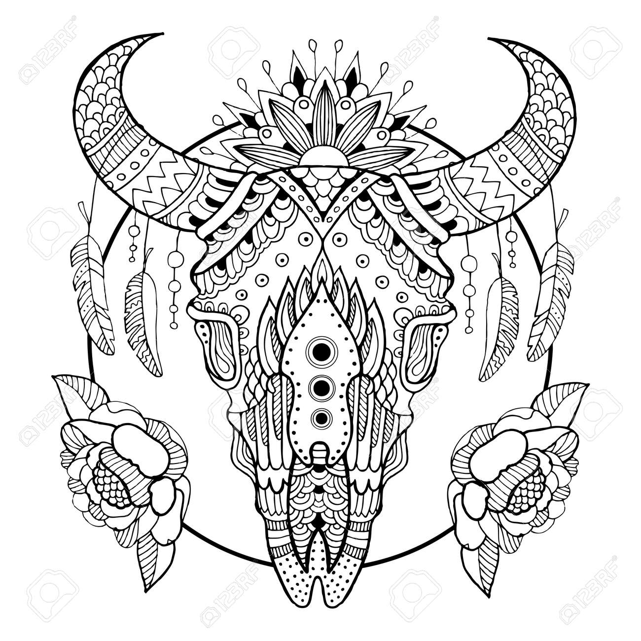 Cow Skull Coloring Book Vector Illustration Royalty Free Cliparts ...