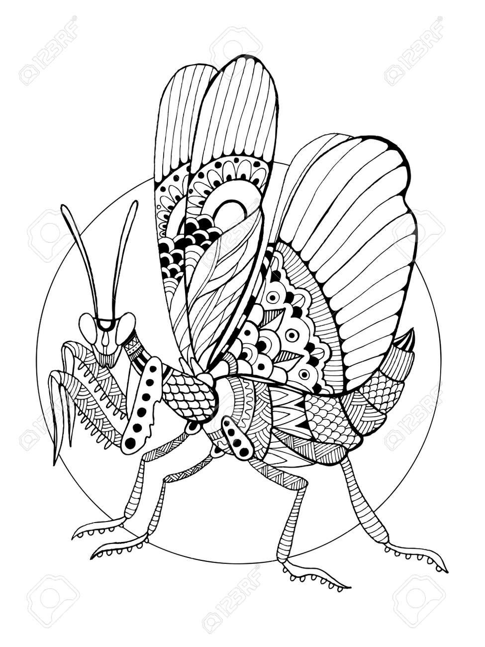 Increíble Insectos Colorear Ornamento - Dibujos Para Colorear En ...
