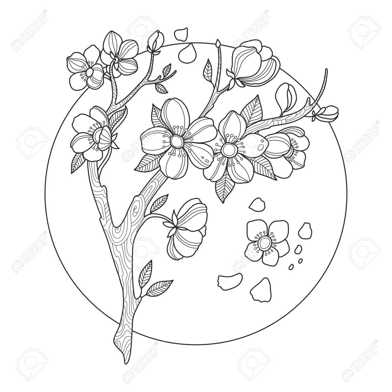 桜塗り絵ベクトル イラスト の写真素材画像素材 Image 72131638