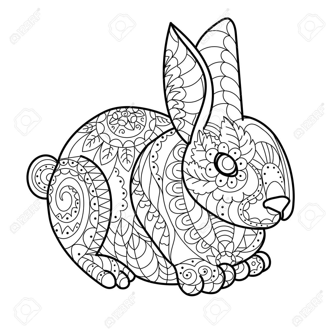 Conejo Conejo Para Colorear Ilustración Vectorial Libro