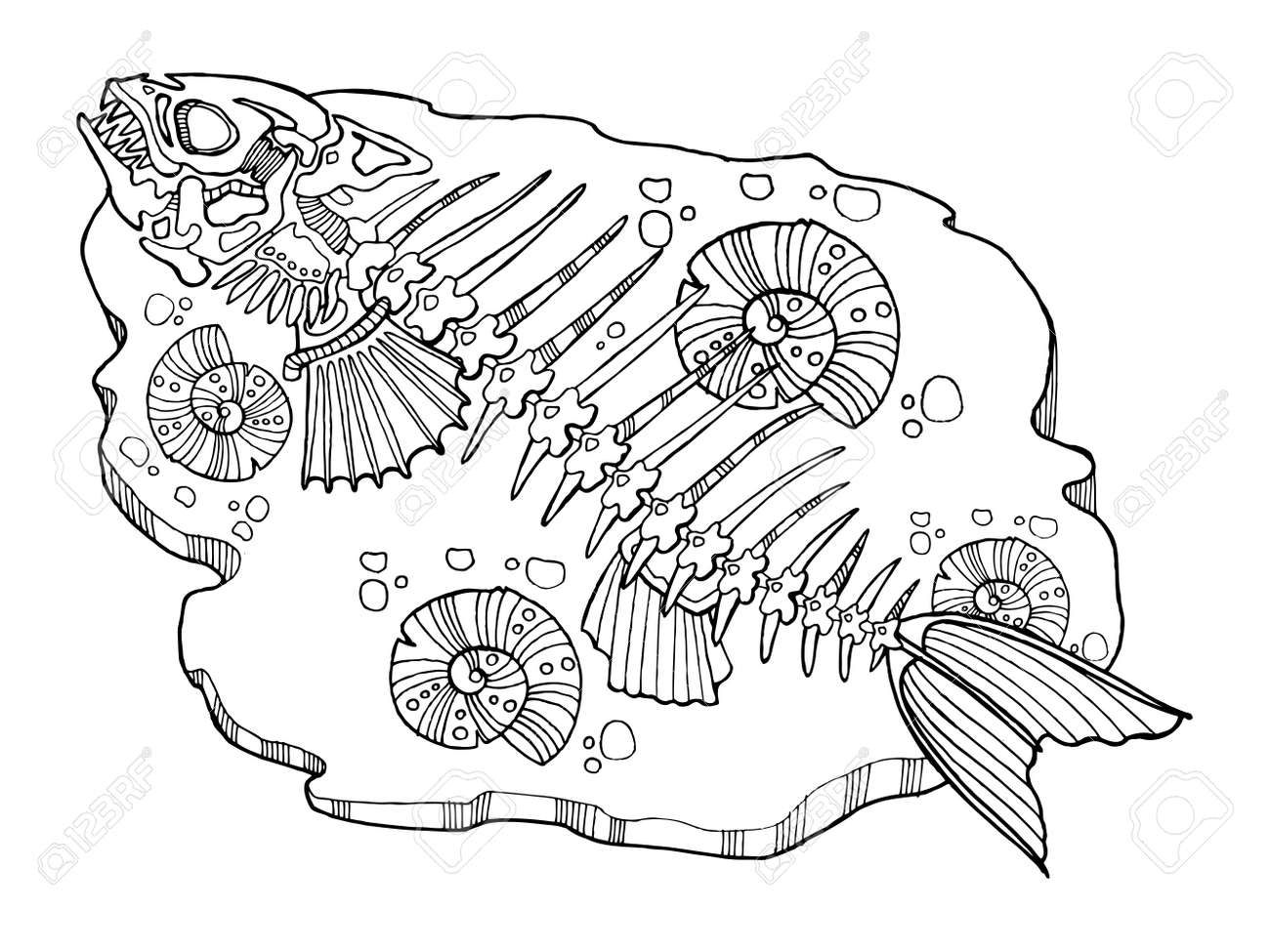 Skeleton Of Fish Coloring Book Vector Illustration. Lace Pattern ...