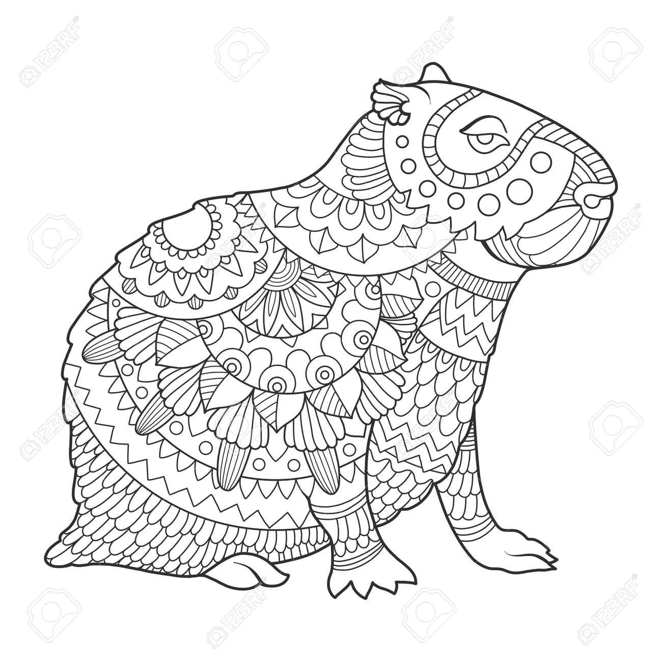 Capybara Rodent Animal Coloring Book Vector Illustration. Black ...