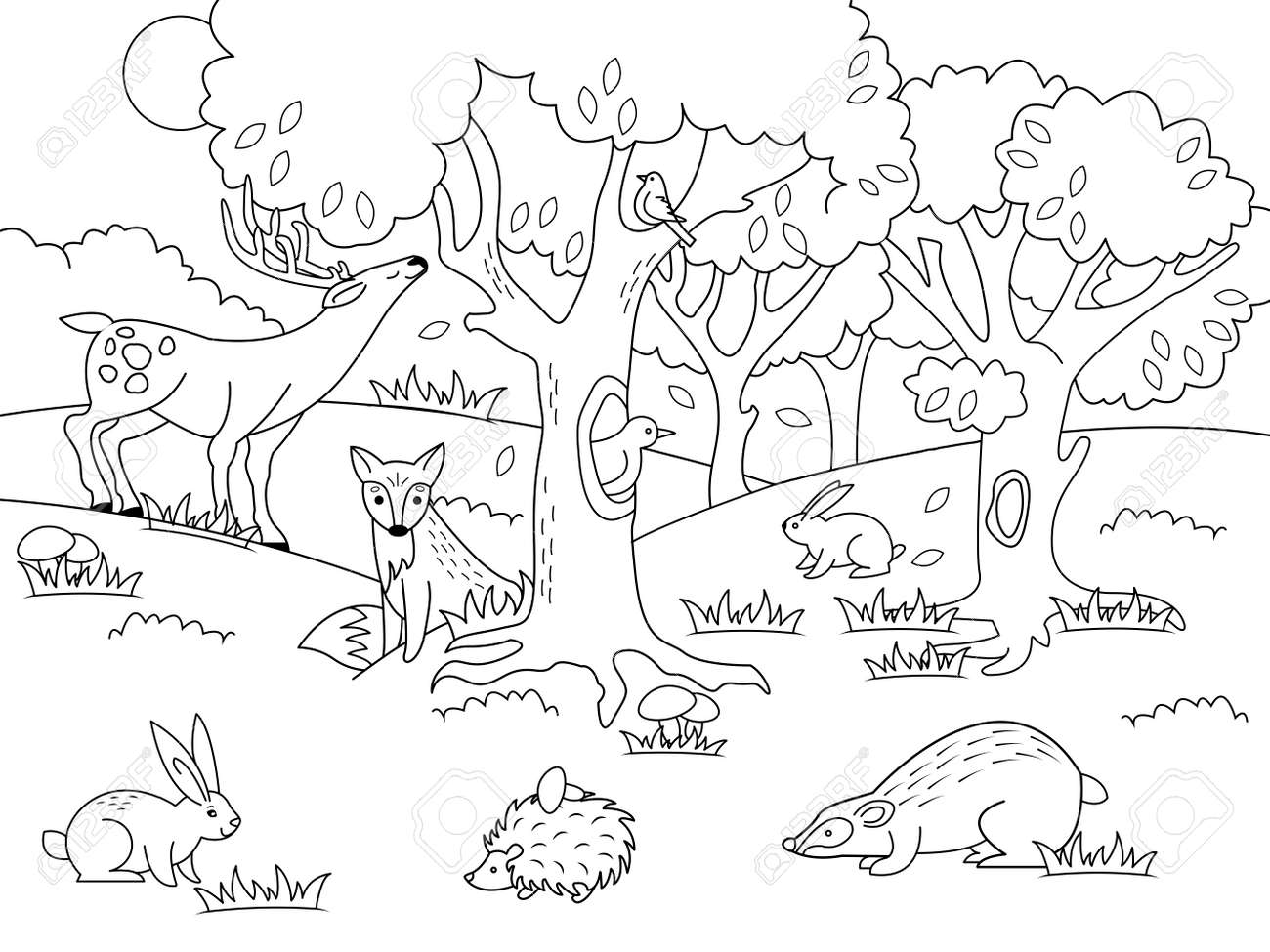 Cartoon Foret Coloriage Illustration Banque D Images Et Photos Libres De Droits Image 97145657