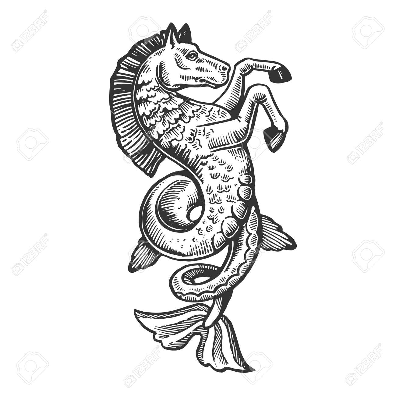 Fantastic fabulous fish horse animal engraving vector illustration. Scratch board style imitation. Black and white hand drawn image. - 106884299