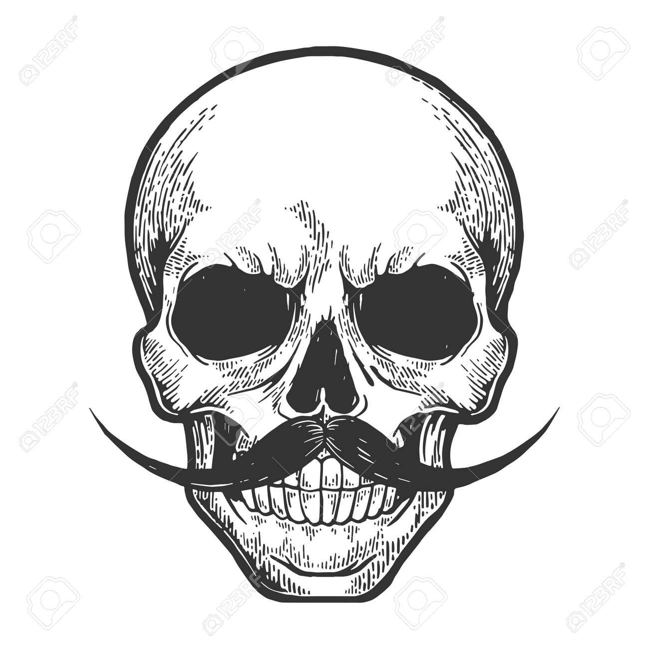 Human skull sketch engraving vector illustration. Scratch board style imitation. Hand drawn image. - 121609027