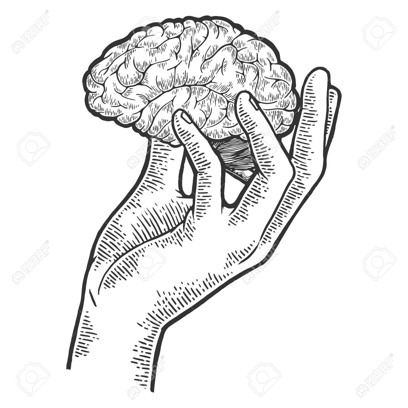 Human brain in hand sketch engraving vector illustration. Scratch board style imitation. Black and white hand drawn image. - 122811961