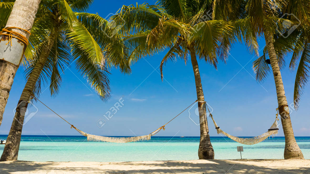Tropical beach with with hammock and palm trees. Beautiful beach and tropical sea. Panglao island, Bohol, Philippines. Summer and travel vacation concept. - 168137976