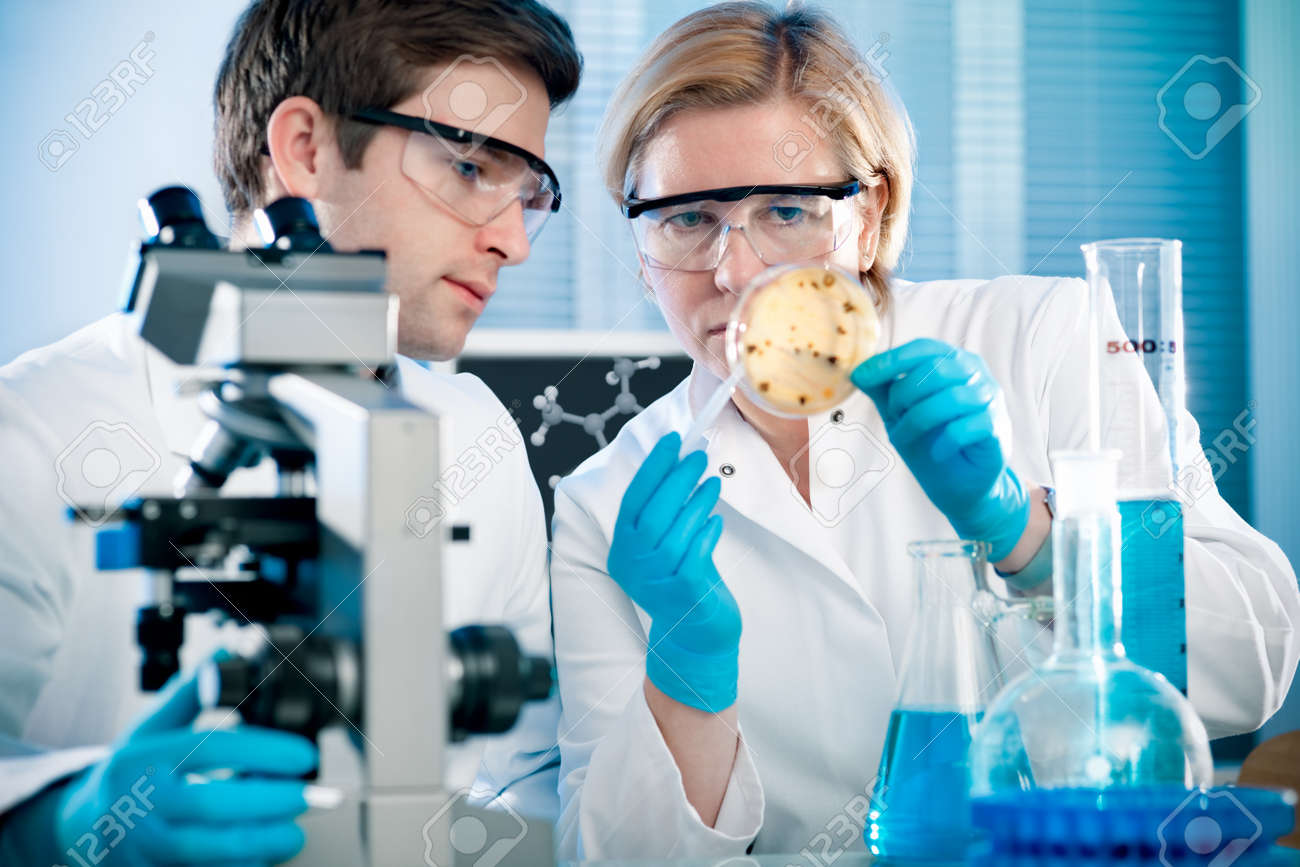 scientists working at the laboratory - 12027071