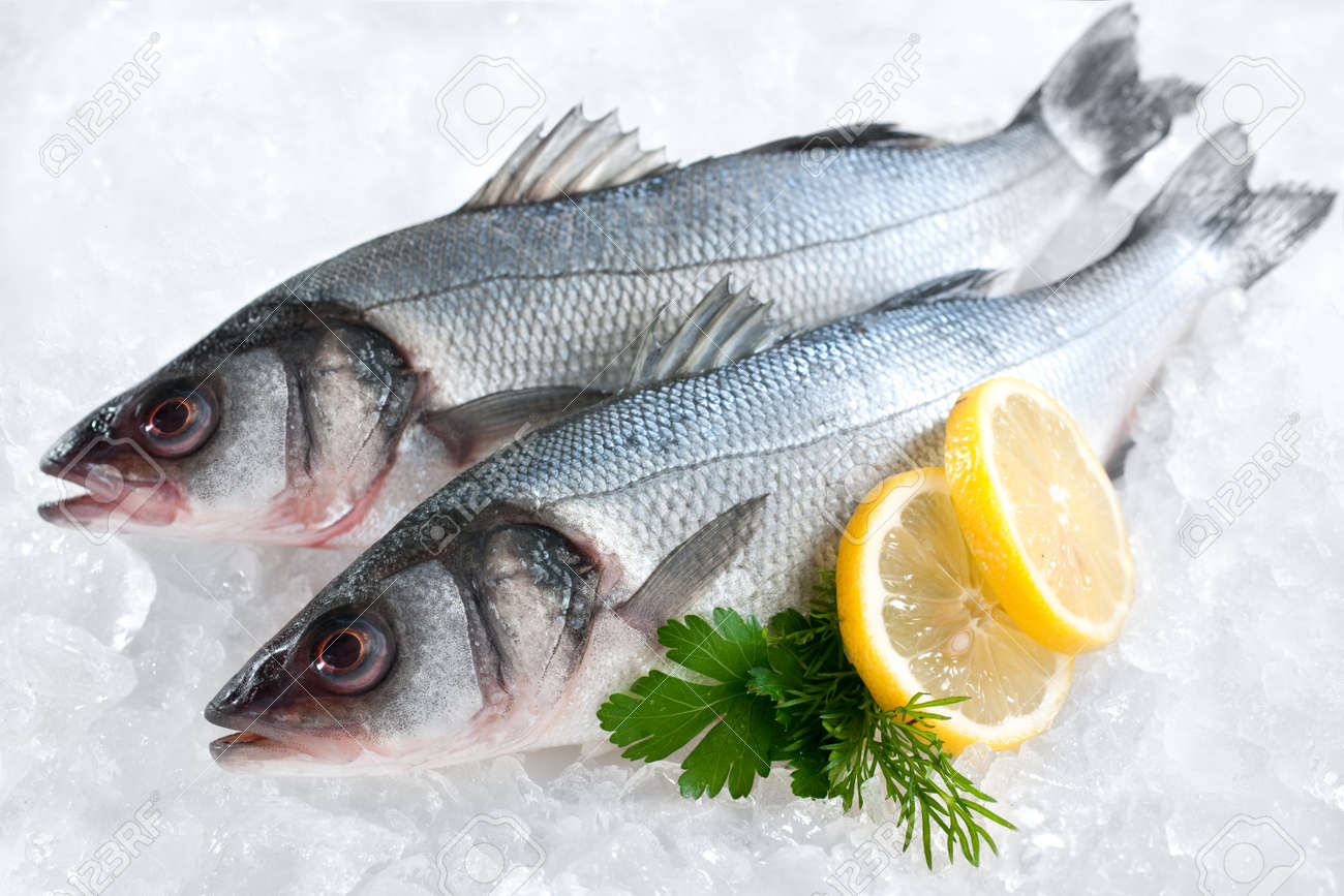 Seabass  Dicentrarchus labrax  on ice at the fish market Stock Photo - 12679980