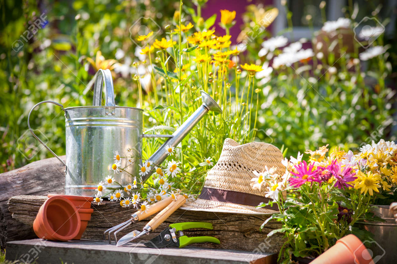 Gardening tools and a straw hat on the grass in the garden - 15022645