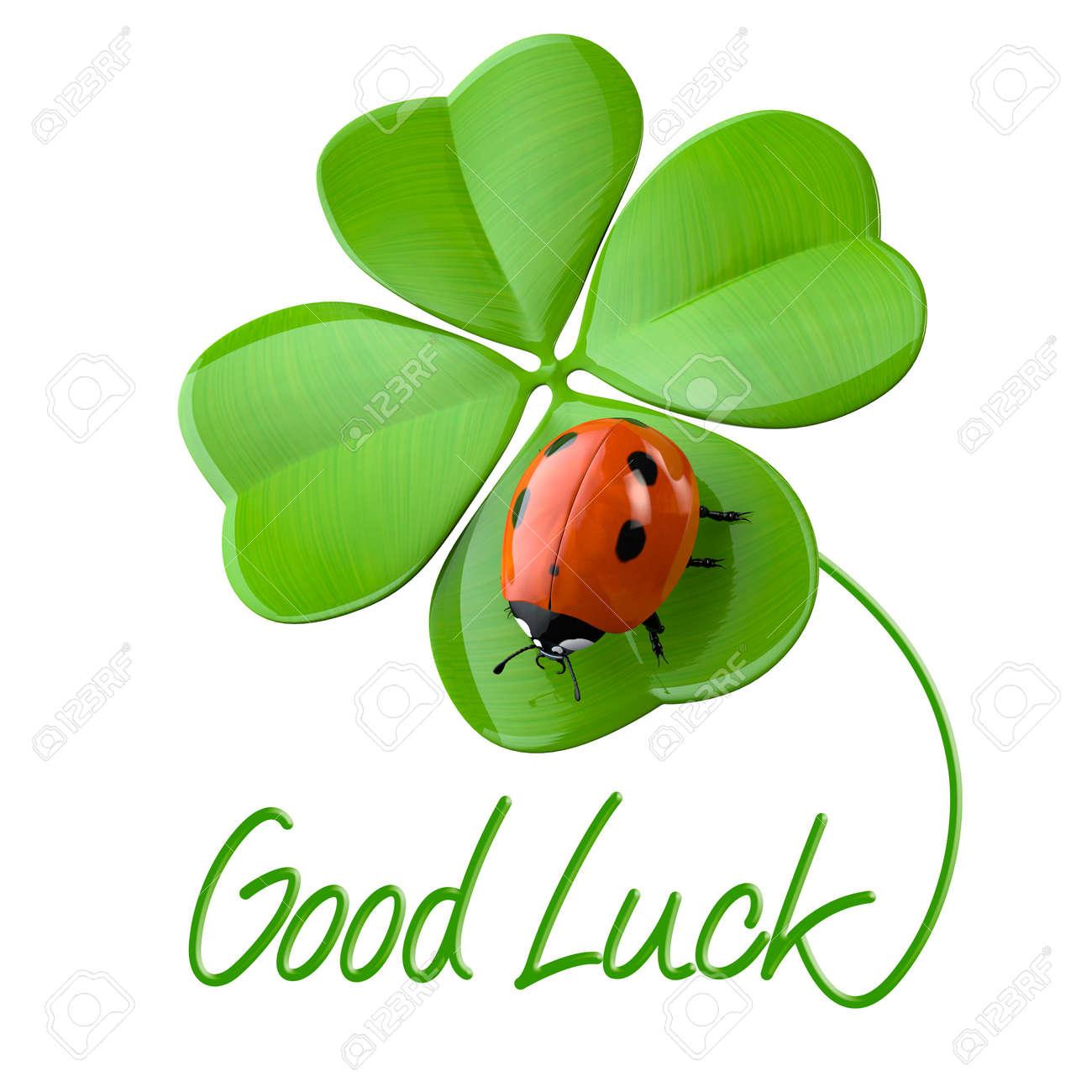 ラッキー シンボル: 四つ葉のクローバーとてんとう虫 の写真素材・画像 ...