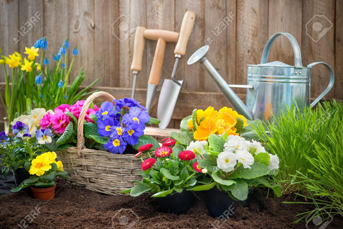 Посадка цветов в саду 15 фотография