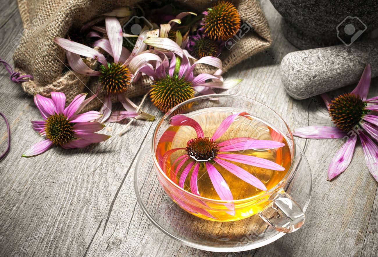 Echinacea purpurea. Cup of echinacea tea on wooden table - 31600655