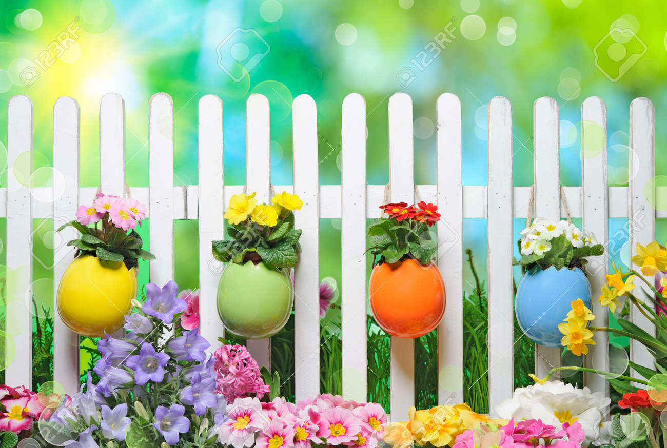 Easter Eggs On Fence With Spring Flowers Stock Photo Picture And