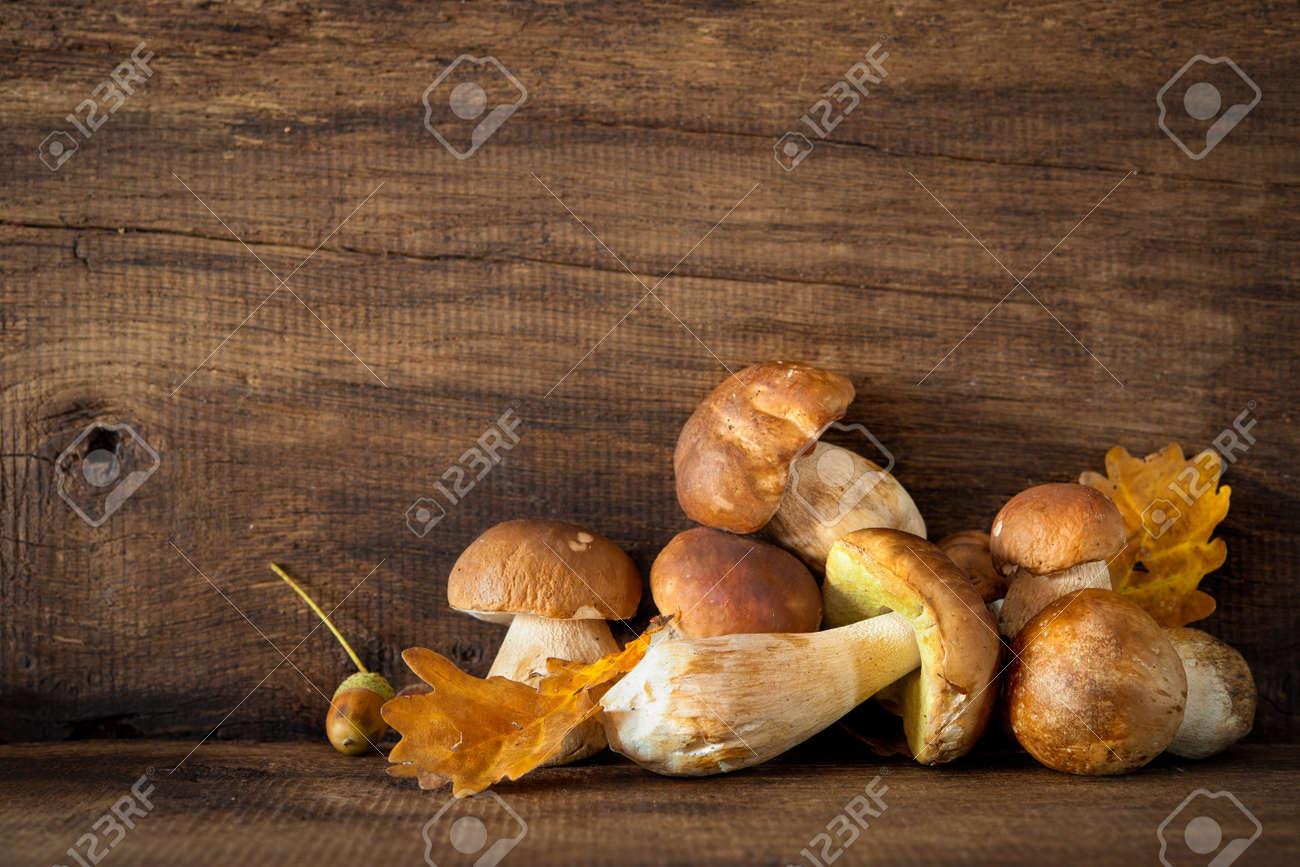 Harvested wild porcini mushrooms on wooden background Stock Photo - 46735192