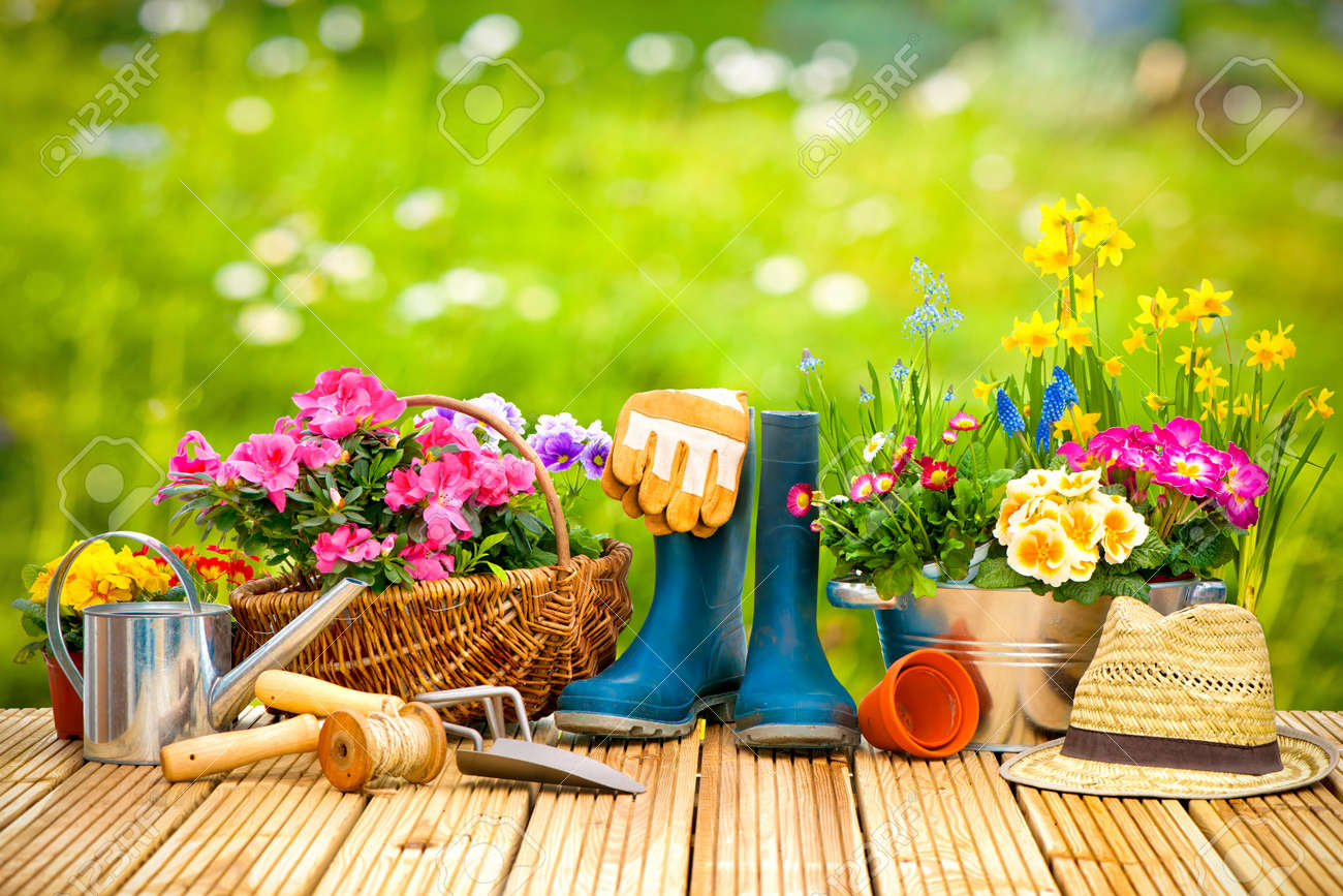 Gardening tools and flowers on the terrace in the garden - 52913984