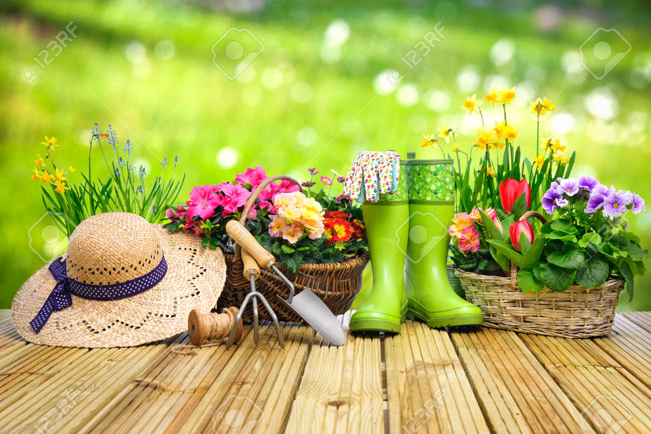 Gardening tools and flowers on the terrace in the garden - 52913983