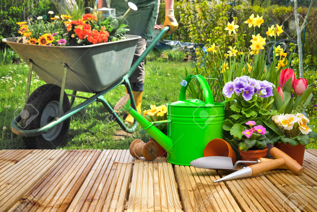 Gardening tools and flowers on the terrace in the garden Stock Photo - 52913989