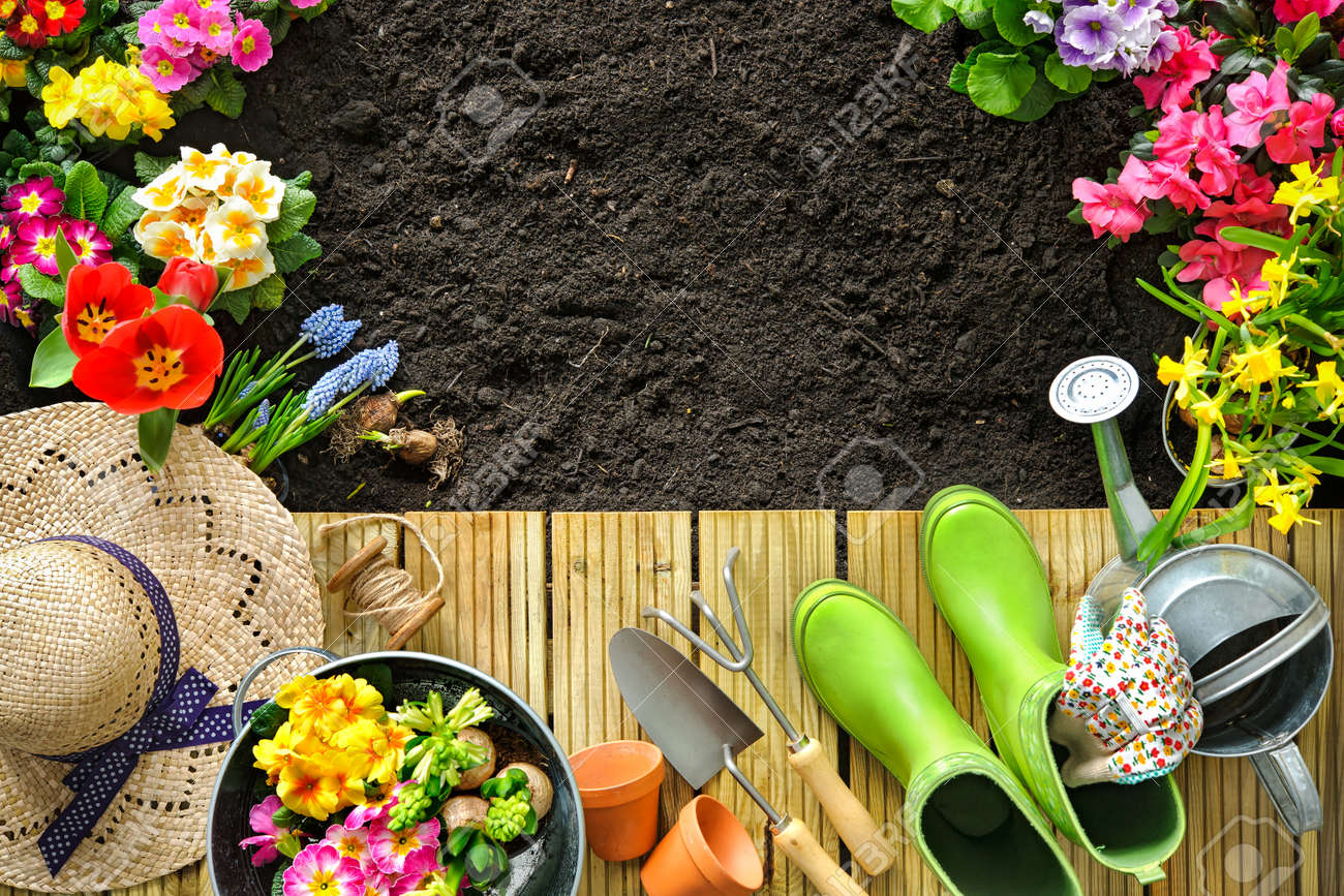 Gardening tools and flowers on the terrace in the garden Stock Photo - 52913991