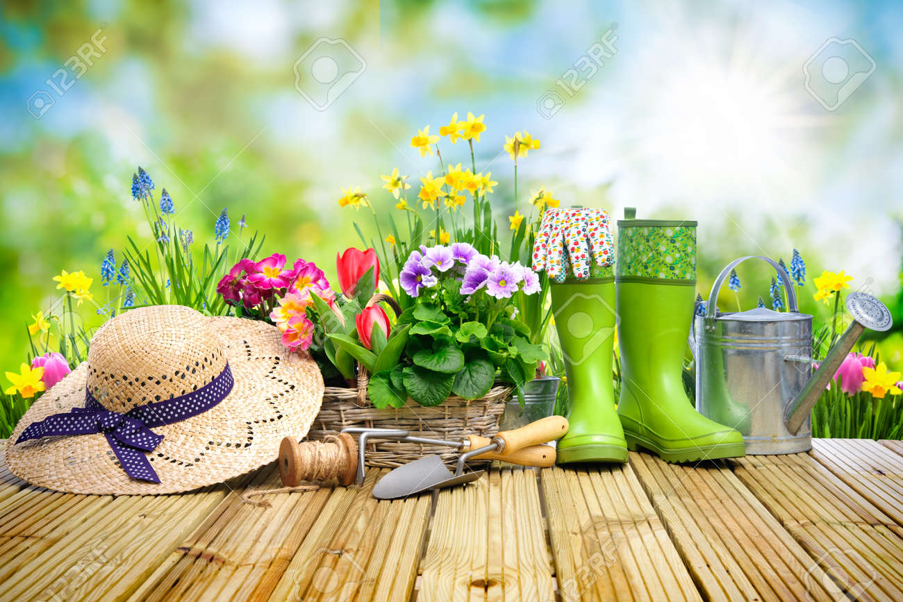 Gardening tools and flowers on the terrace in the garden - 52913993