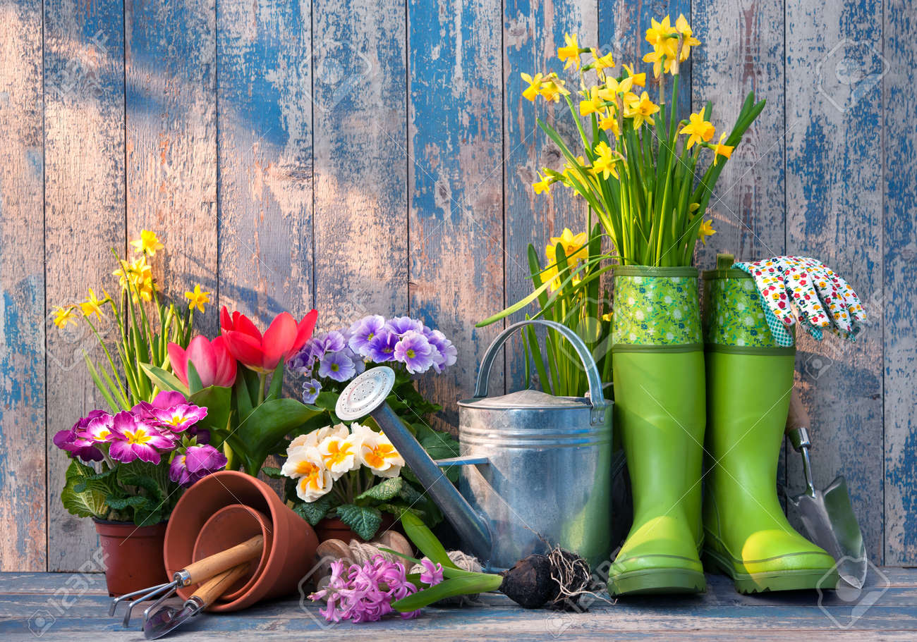 Gardening tools and flowers on the terrace in the garden - 52913999